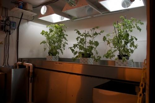 mobile-hydroponics-trailer-007