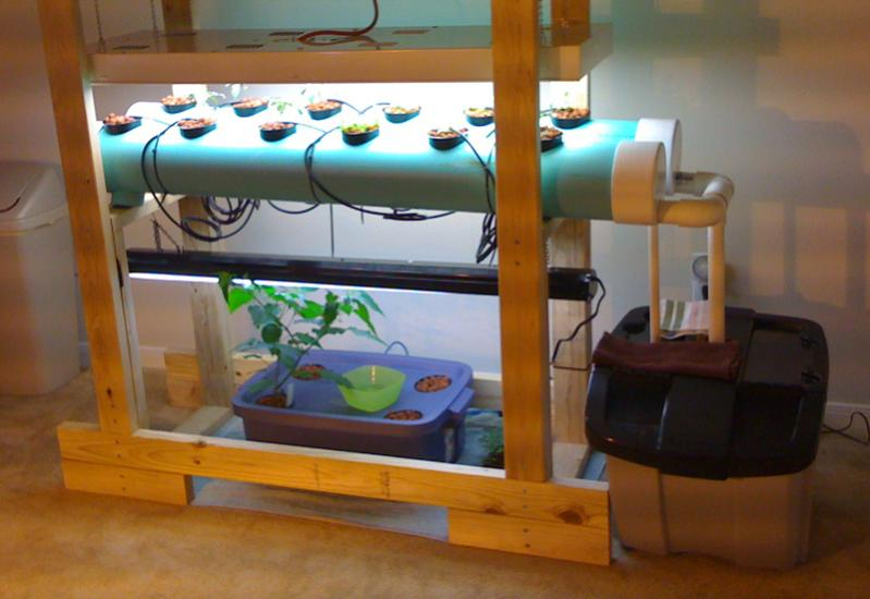 Homemade Indoor NFT Hydroponics System
