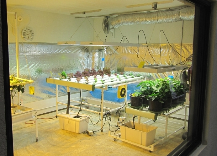 Building your own indoor grow room part 1 hydroponics for Grow room design plans